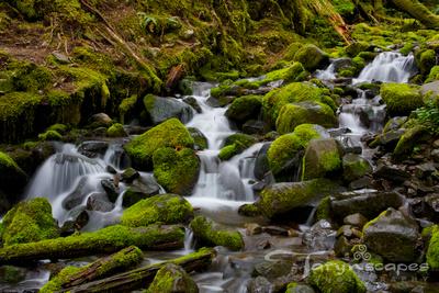 Sul Duc Stream